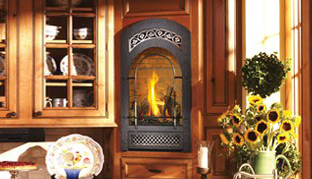 Fireplace Xtrordinair